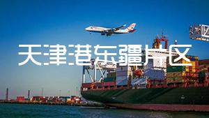 天津港东疆片区